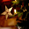 Weihnachtsstern2<div class='url' style='display:none;'>/</div><div class='dom' style='display:none;'>kirche-murten.ch/</div><div class='aid' style='display:none;'>110</div><div class='bid' style='display:none;'>479</div><div class='usr' style='display:none;'>32</div>